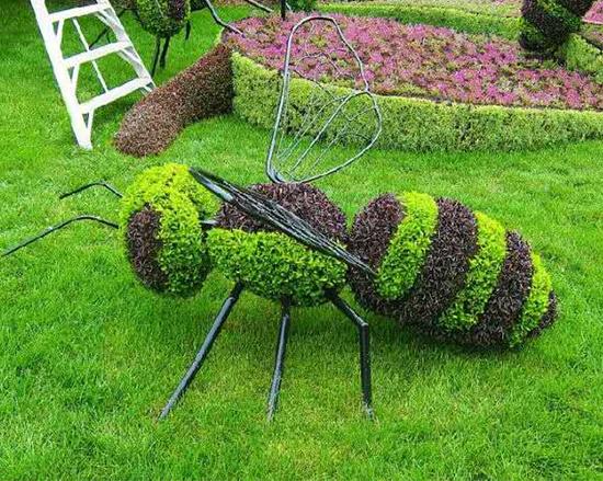五色草蜜蜂造型