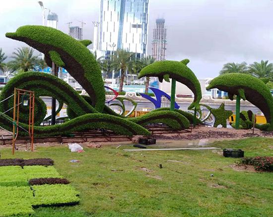 海豚五色草造型