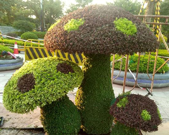 植物绿雕造型