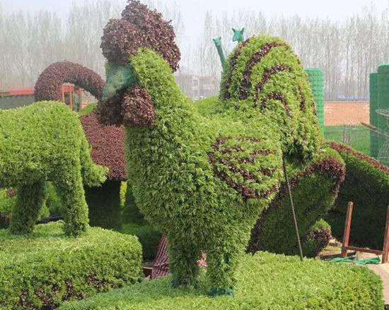 动物绿雕设计案例
